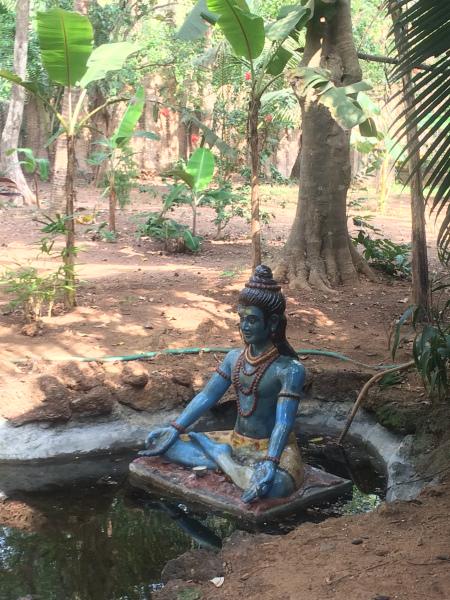 Statut yoga typique
