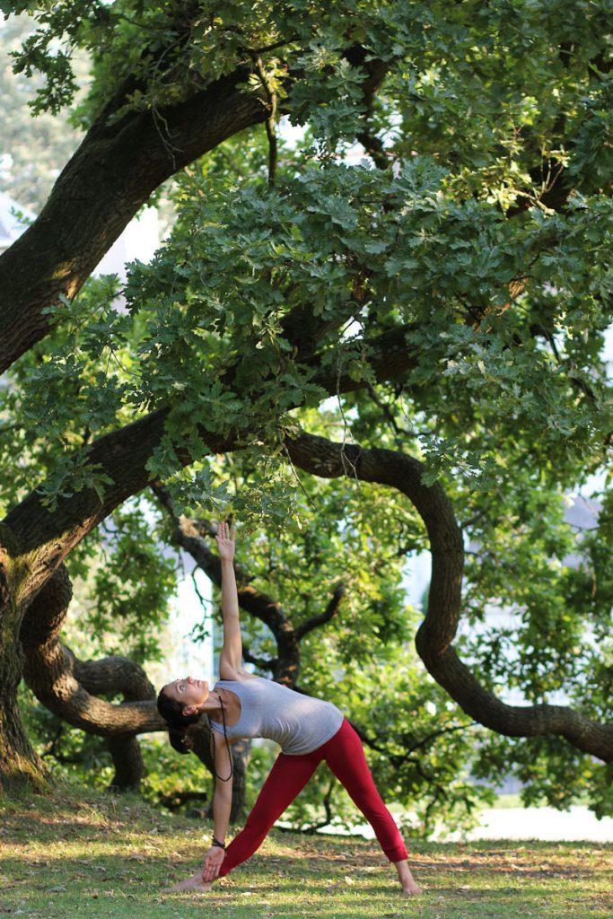standing yoga sous les arbres
