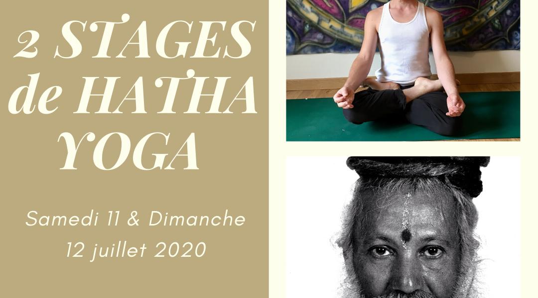 Stages de Hatha Yoga Traditionnel, avec Antoine GUIGNARD