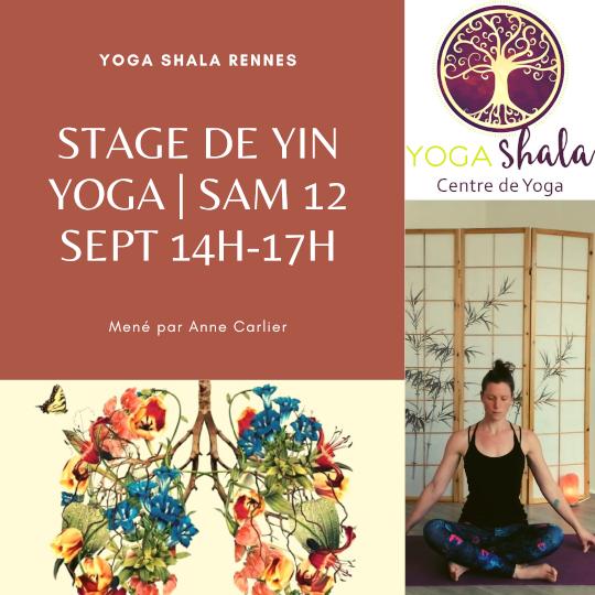 Stage de Yin Yoga | Sam 24 octobre 14h-17h
